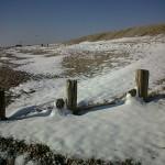 Snowkite camber