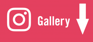 Gallery Below