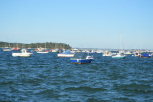 PooleHarbourBoats